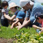 9/22(日)東京地球農園で採農!参加者募集中です。