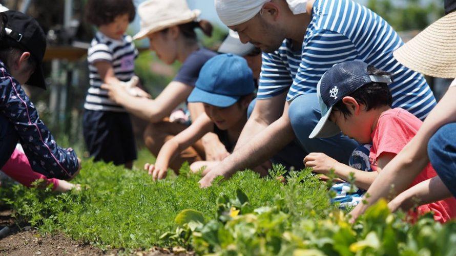 9/22(日)東京地球農園で援農!参加者募集中です。